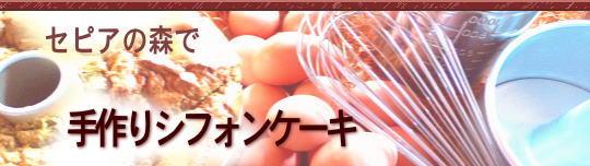 手作りシフォンケーキ【セピアの森で】