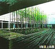 3階屋上庭園