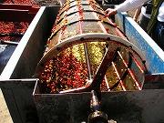 機械で果肉除去